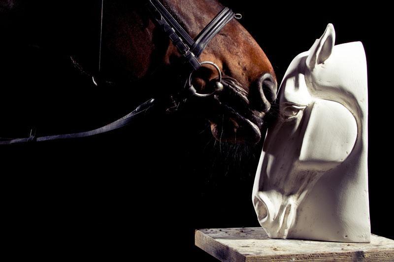 Naš konj u igri