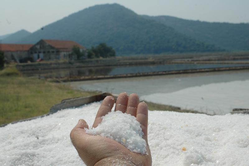 Bandić ne želi stonsku sol