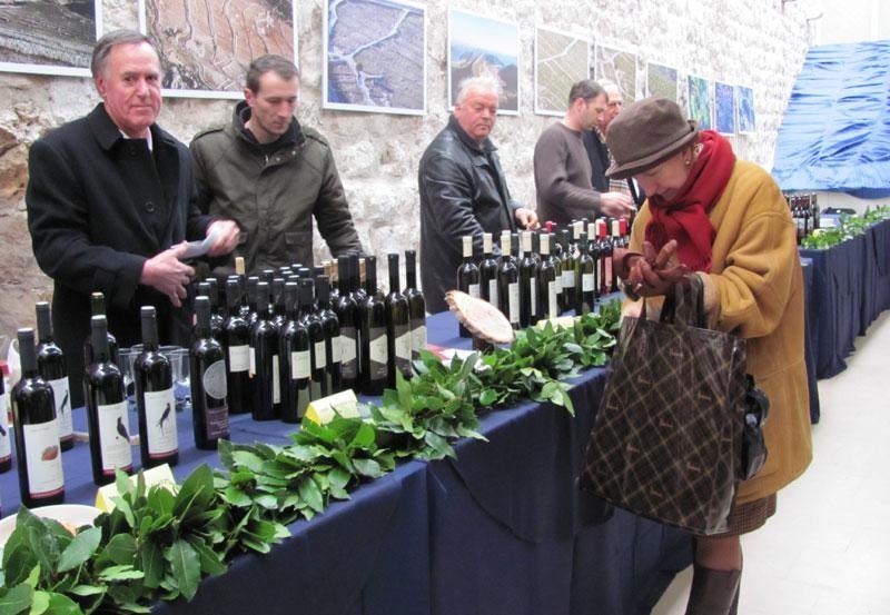 Staze vina i okusa u Gradu
