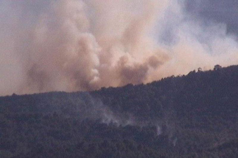 Na Šipanu izgorjelo 50 Ha borove šume i niskog raslija