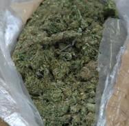 PRETRAGA U stanu mu našli vagu, marihuanu, novac…