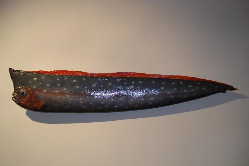 Zbirka riba bogatija za hamu i jedroglavku