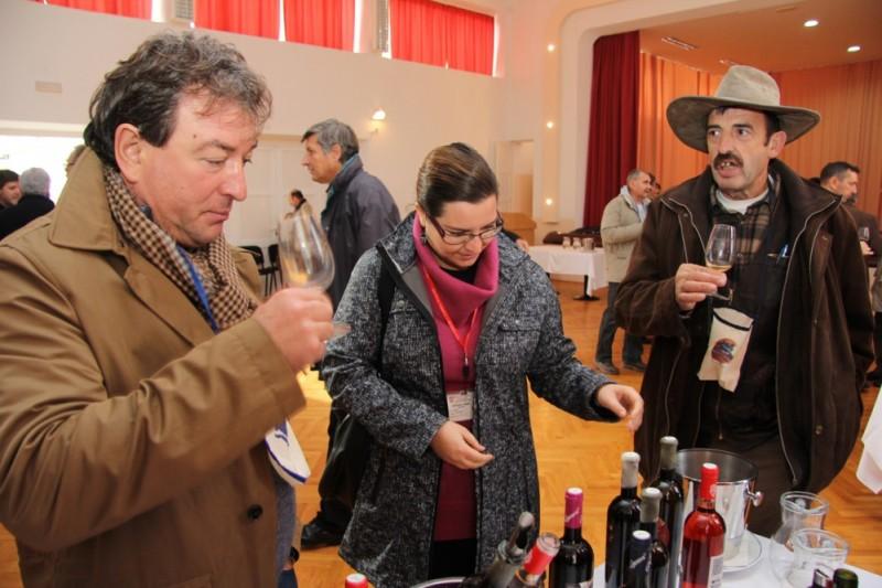 FOTO Pelješki vinari otvorili vrata svojih podruma
