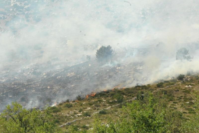 Vatrogasci uspjeli zaustaviti požar u Konavlima