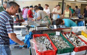 LIVE VIDEO Odsad možete prvi doznati ima li ribe na gruškoj peskariji!