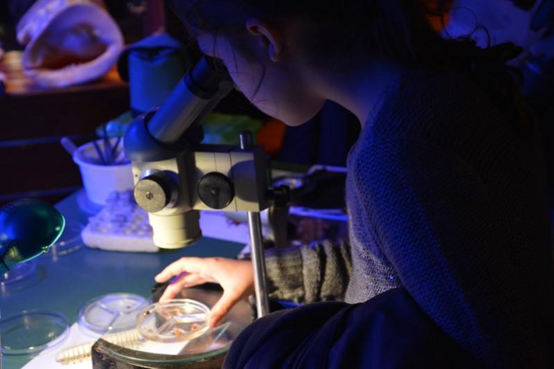 NOĆ ŠPILJSKIH ŽIVOTINJA Od speleološke opreme do mikroskopski malih bića