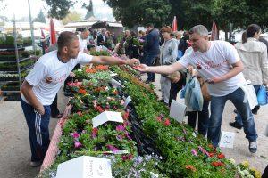 Sajam cvijeća @ park Luja Šoletića | Dubrovnik | Dubrovačko-neretvanska županija | Hrvatska