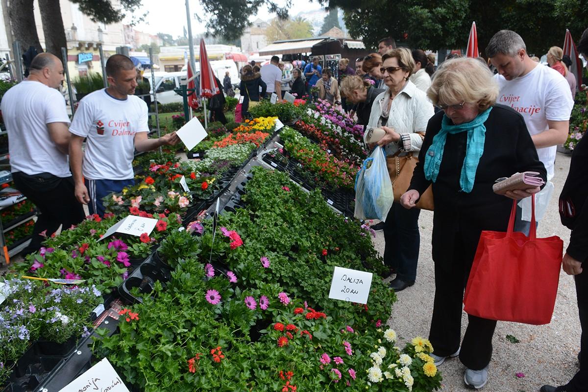 Sajam cvijeća u Gružu