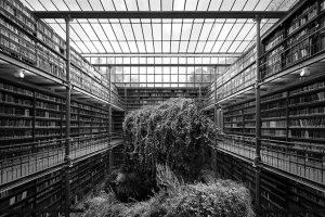 'Priče o prostoru' Tanje Deman @ Galerija Dulčić Masle Pulitika | Dubrovnik | Dubrovačko-neretvanska županija | Hrvatska