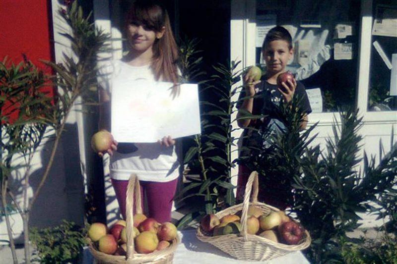 Eko Omblići večeras rade festu uz Dan jabuke