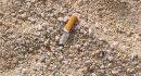 SMOKVICA 66-godišnjakinja izazvala požar opuškom cigarete, u gašenju ozlijeđen 76-godišnjak