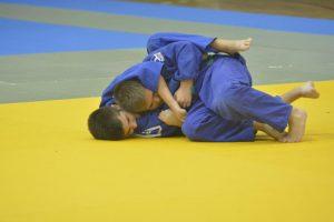 NOVA ŽRTVA PADA PRORAČUNA? Otkazan judo turnir 'Sveti Vlaho'