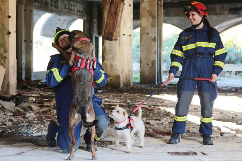 FOTO Vježba u Kuparima: Što napraviti nakon potresa?