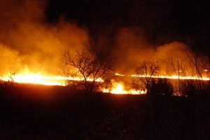 GORI U KONAVLIMA Vatrogasci zaustavili širenje požara prema kućama, no još traje borba