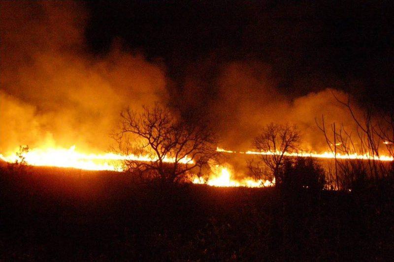 Metkovčanin nezakonito spaljivao korov i izazvao požar!