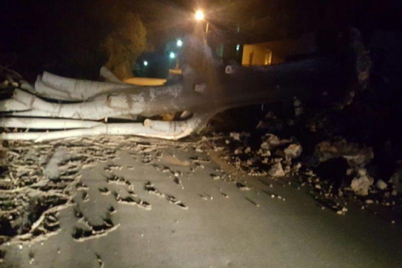 KAD PUŠE 150 KM NA SAT Olujna bura rušila sve pred sobom u Konavlima