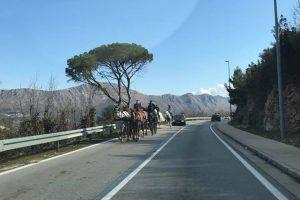 Kad na cesti kroz Župu sretneš konjsku zapregu!