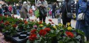 FOTO Na Sajmu cvijeća 'nema čega nema'