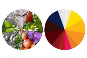 'Priroda - laboratorij boja: tradicionalno tehnološko znanje' @ Žitnica Rupe