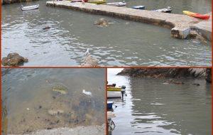 NIJE ODAVNO Ponovo se izlila kanalizacija u Pilama