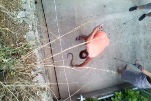 ULICA BARTOLA KAŠIĆA Nova zmija na deponiju šuta