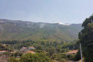 Požar u Konavlima i dalje je aktivan