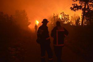 Mljet u plamenu gasi 50 vatrogasaca! Spašena su mjesta Blato i Ropa