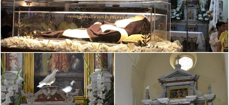 FOTO Golubica promatrala vjernike u molitvi oko sarkofaga s tijelom sv. Leopolda
