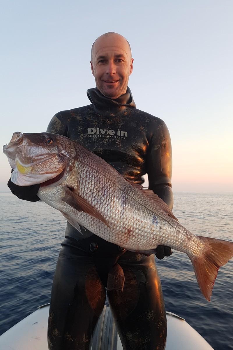 Web stranica za upoznavanje više riba u moru