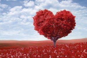 PREDAVANJE OLIVERE DRUTTER 'Ljubav nije osjećaj, to je sposobnost'