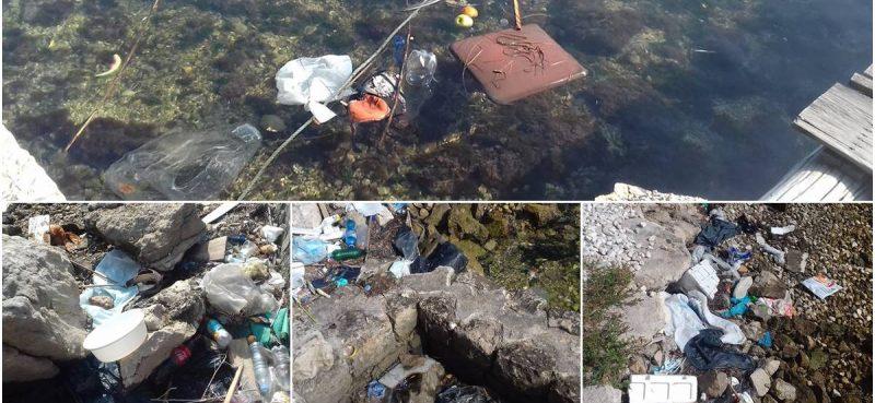 APEL EKO UDRUGA 'Na Lapadskoj obali hrpa smeća i raspadnuti uginuli galeb'