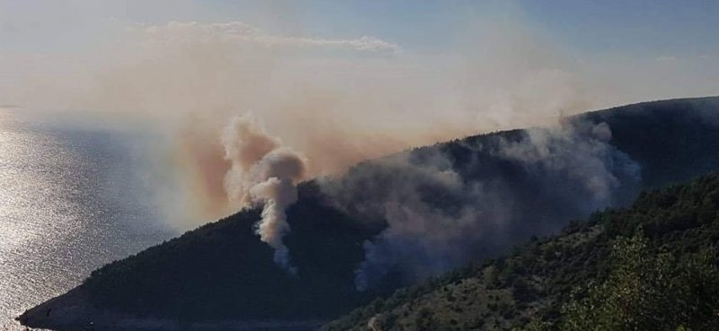 FOTO/VIDEO GORI U ŽRNOVU Požar gasi kanader